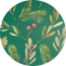 holly_pine_circle_bg