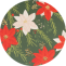poinsettia_circle_bg