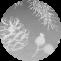 silver_white_circle_bg